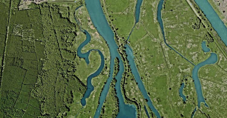 Das Gebiet des Nationalparks Unteres Odertal ist durch ein Mosaik aus Gewässern, Röhricht und Grünland geprägt.