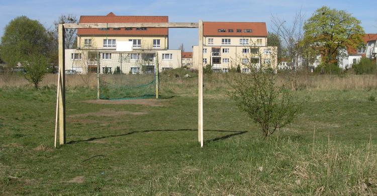 Entwicklung öffentlicher und privater Grünflächen