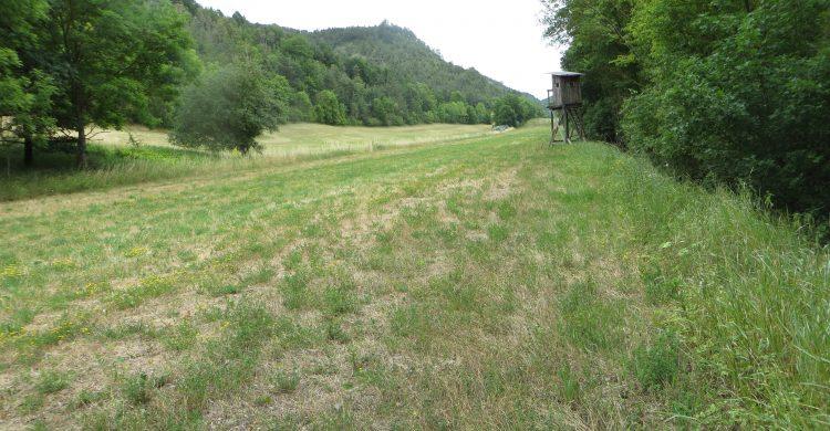 Landschaftliche Einbindung der ehemaligen Trasse